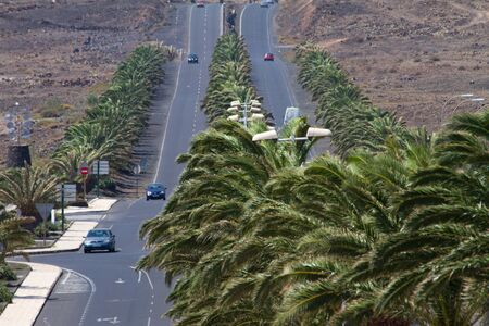 Road with palm trees in Costa Teguise Lanzarote island