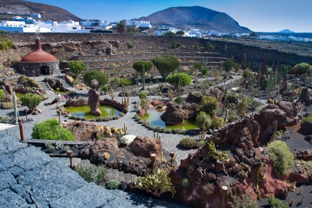Jardin de Cactus at Lanzarote island Stock Photo