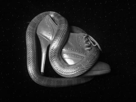 eva: shoe eva