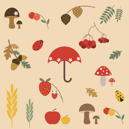 Autumn elements for design Vector