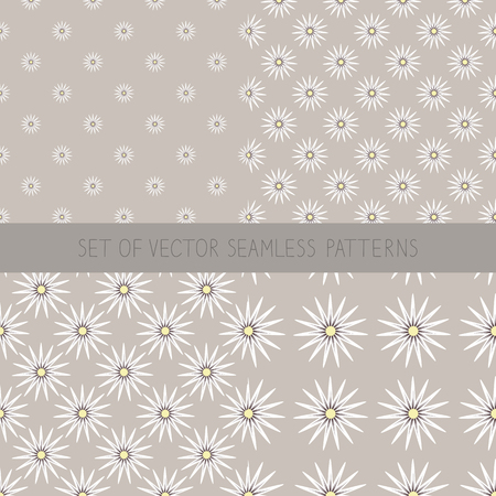 Set of seamless patterns with camomile. Seamless background with daisy flowers.White daisies on  beige background. Cute camomile wallpaper in vintage style. Pastel floral print.