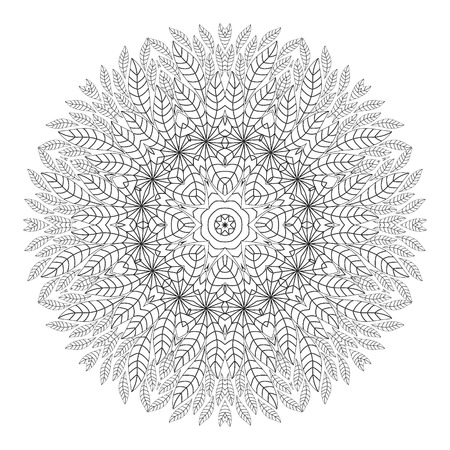 ethnicity: Mandala. Coloring page. Ethnicity floral round ornament. Circular ornament in ethnic style. Floral elements.