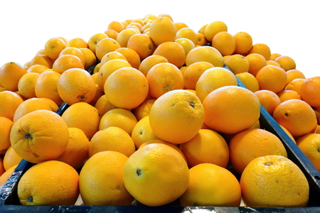 navel: Navel Orange, Group of Friut isolated white background