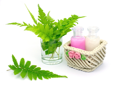 shower gel: Shampoo and Shower gel put in ceramic basket on white background. Shampoo, Shower gel bottles with green leaves in a glass of water. Stock Photo