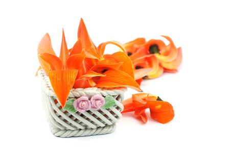 erythrina: Petals of Bastard Teak Flower in ceramic basket on white background. Stock Photo