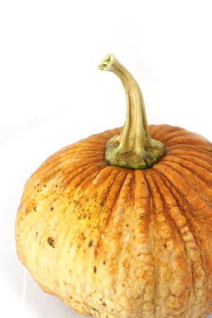 tilt view: Small asian yellow pumpkin on white background. Object side view, and Tilt 45 degrees