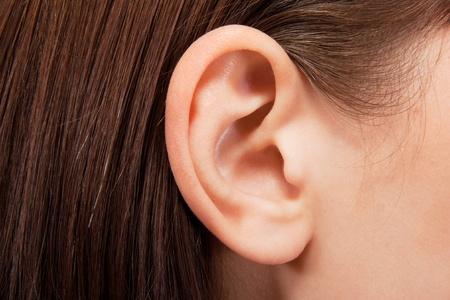 Detalle del oído humano Foto de archivo