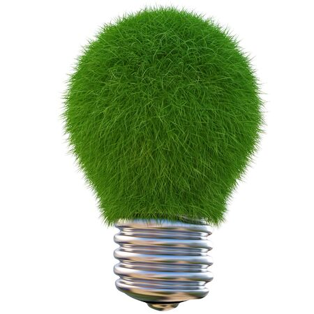 lightbulb made of green grass. isolated on white photo