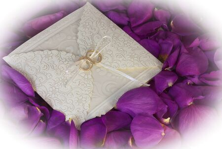 two rings on the wedding card among the rose petals photo