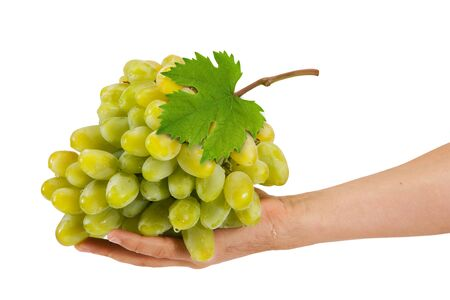White grapes are in the hands isolated on white background photo