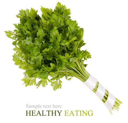 parsley isolated on a white background photo