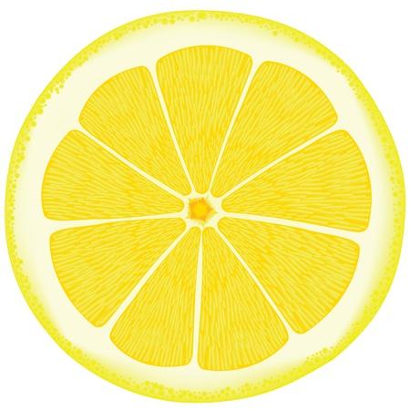 Zitrone eps10