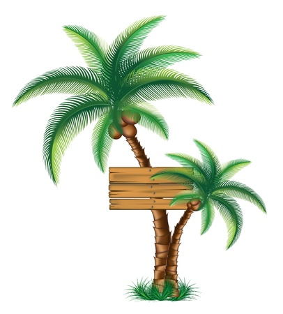 A sign on the palms vector