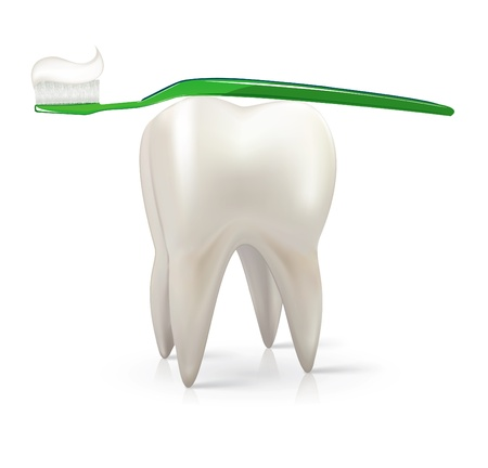 teeth cleaning: White tooth with a green toothbrush vector