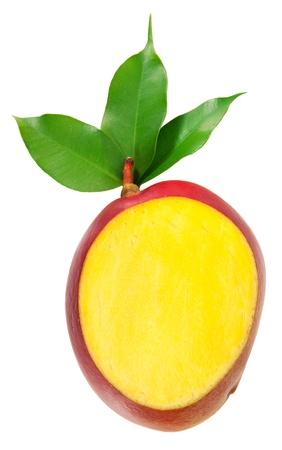 mango leaves: mango isolated on white background