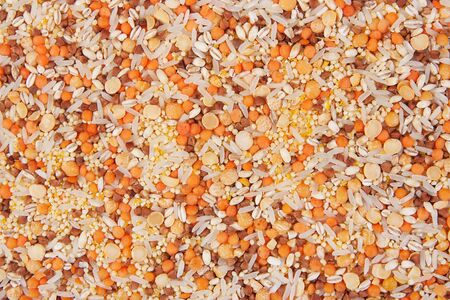 cereals background, mixed with different grains photo