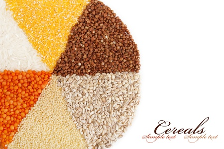 circle with segments from the different types of grain.isolated on white. photo