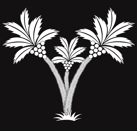 palm frond: three black and white palms.
