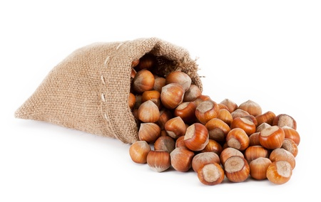 hazelnuts in a burlap bag  isolated on white background