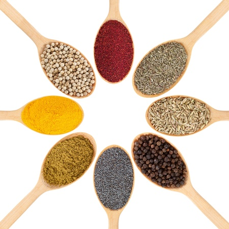 Collection of 8 spices on a wooden spoon  isolated on a white background Stock Photo - 12835620