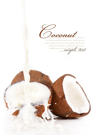 coconut milk: Coconut with coconut milk splash.isolated on a white background