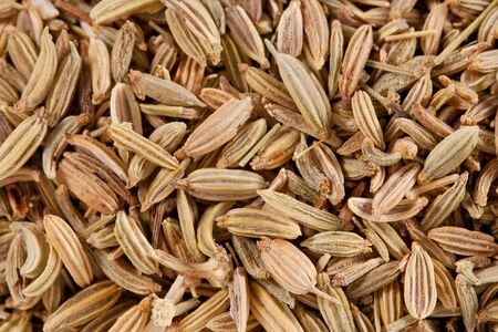 caraway seeds background photo