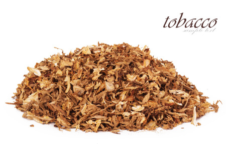 tobacco plants: Dry smoking tobacco close-up