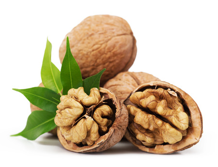 Walnut closeup isolated on white background Banque d'images