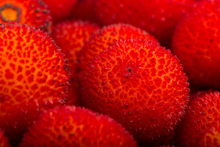 jhy: background of red fruits of Arbutus unedo.
