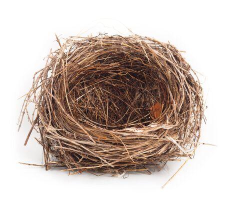 Empty nest isolated on white background Stock Photo