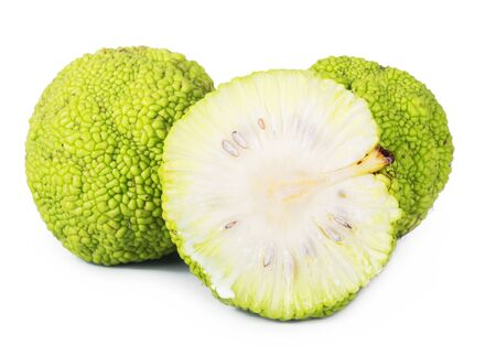 hedgeapple: Adams apple isolated on white background. maclura