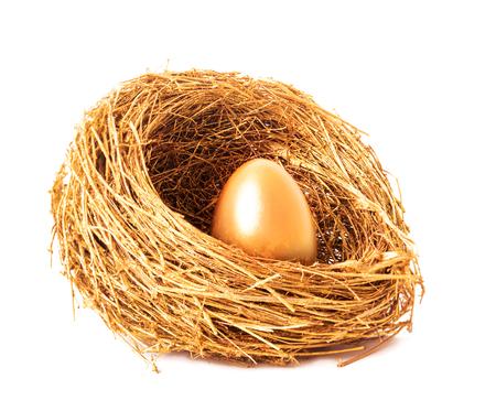 Golden egg in the gold nest. Isolated on white background