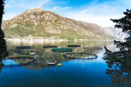 Big Cages for fish farming and a little boat in Montenegro