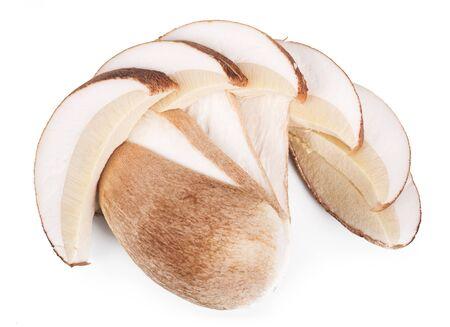 Boletus edulis isolated on white background
