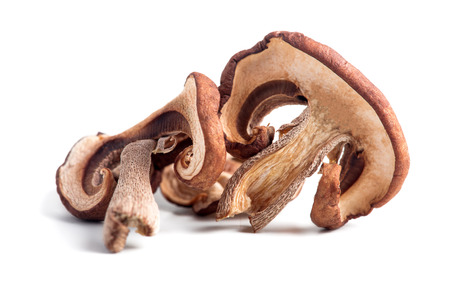 Dried white mushrooms on a white background. Dried porcini mushrooms. Isolated on white background.