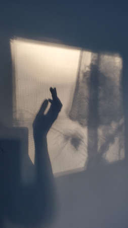 Blurry mystery shadow of female hand silhouette on wall. Cinematic gesture shadows in defocus window projection with lace curtain