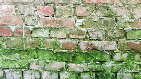 Weathered old red terracotta brick wall with green moss and grunge cement joints. Brick textured background. Brickwork backdrop. Stone masonry wall surface closeup. Grungy textures