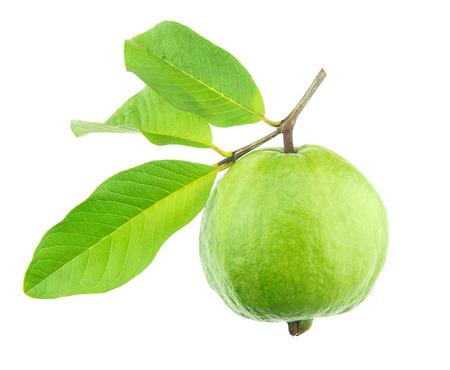 guava fruit: Guava Fruit on white background Stock Photo