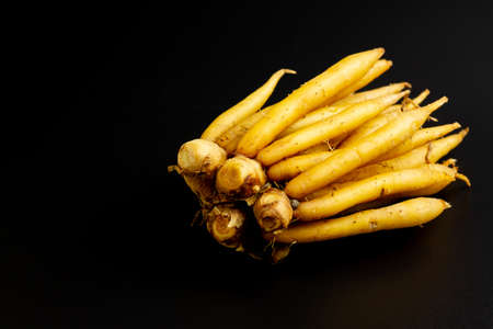 Fresh Finger root (Krachai) isolated on black background. The scientific name is Boesenbergia rotunda. Finger root is herb and Thai food ingredient. Stock Photo