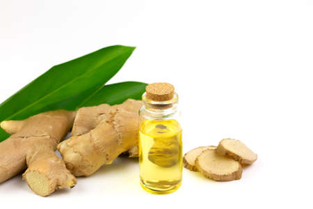 Ginger essential oil in bottle and fresh ginger isolated on white background. The scientific name is zingiber officinale. Herbs for health care concept.