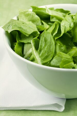 Some fresh green salad in a white bowl  photo