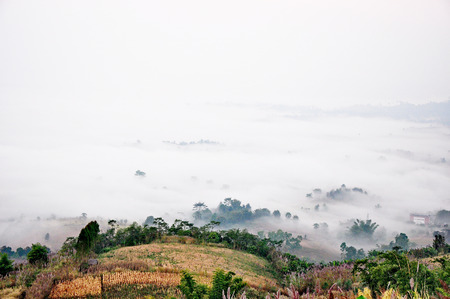 befog: Foggy morning in the winter of Khao Kho