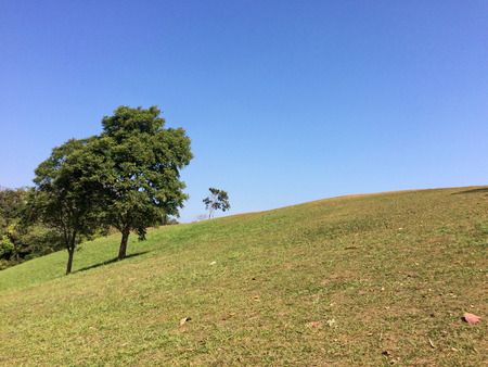 dow: Meadow on the hill at Doi Samer Dow Stock Photo