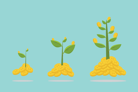 Infographic of investment and money tree growing with gold coin for saving, business investment project and economic concept. Vetores