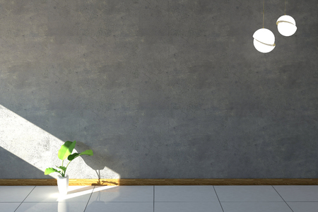 granite floor: Cement plaster wall and granite floor with a plant. Stock Photo
