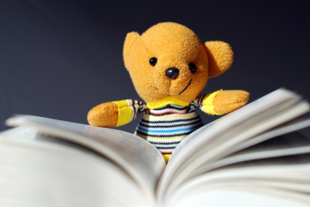 toy bear: Toy orso lettura