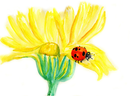 coccinella: Ladybug sitting on blooming dandelion,watercolor illustration Stock Photo