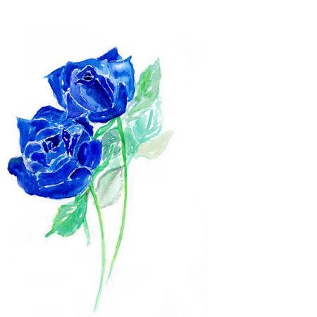 青いバラ 水彩イラスト の写真素材 画像素材 Image