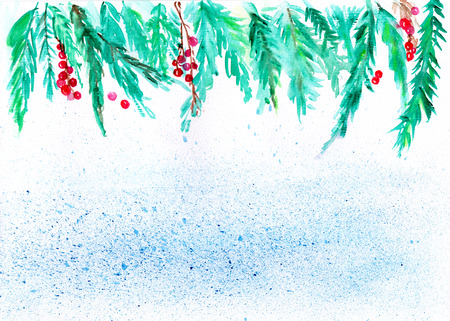 pine boughs: Christmas watercolor background, Holly and pine boughs