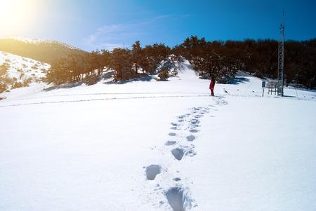 south korea: Hallasan mountain at Jeju island Korea  in winter